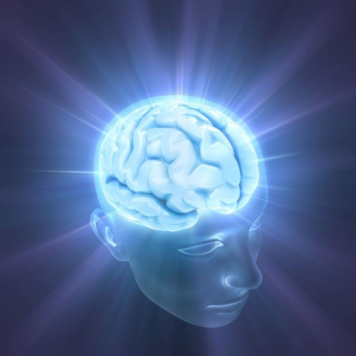 nervonium, mind, brain, memory, concentration, focus, circulation, support, supplement